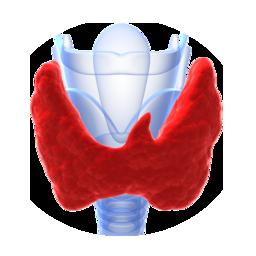 low thyroid treatment in nj